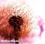mother_made