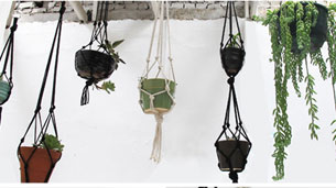 hanging_planters_intro