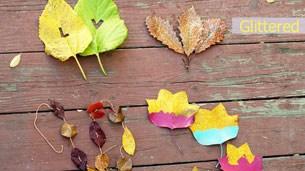 leaves_idea_intro