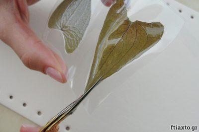 Κοσμήματα απο αποξηραμένα φύλλα 4