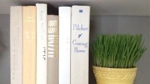 book_hiding_intro