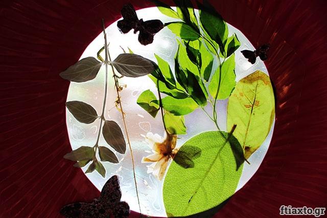 Κάδρα παραθύρου με υλικά της φύσης