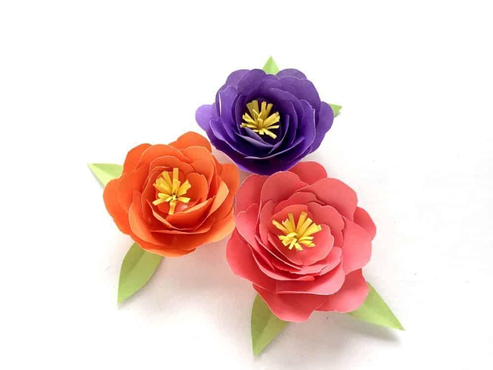 10 χειροποίητα λουλούδια από χαρτί 3